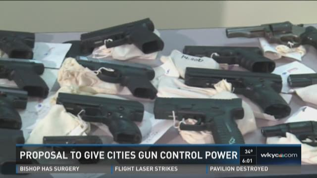 Proposal to give cities gun control power