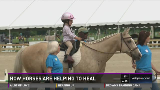 Hunter Jumper Classic features riders with disabilities