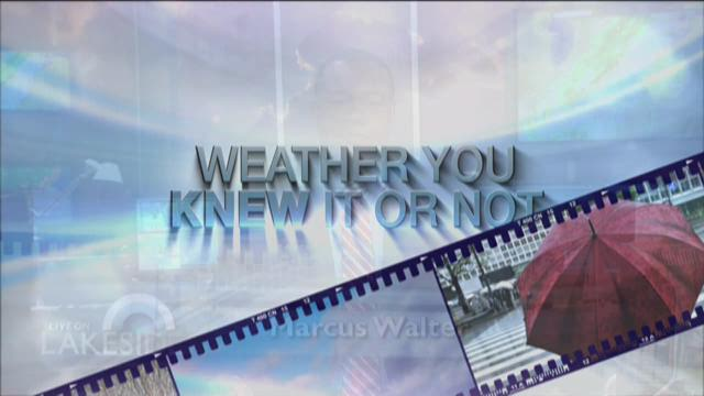 Marcus Walter - Weather You Knew It 7/7/15