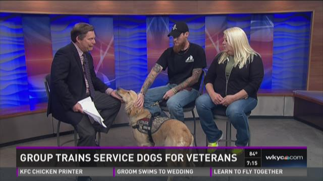 Dogs4warriors trains service dogs for veterans