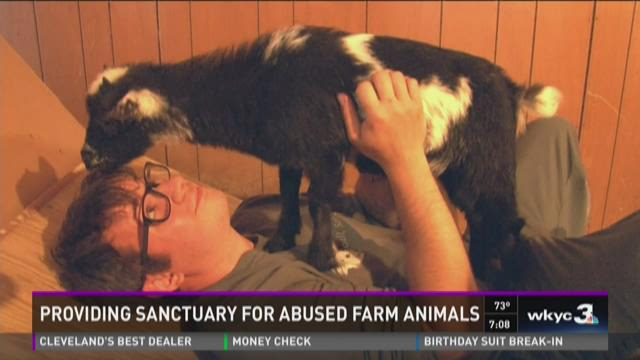 Lasa Sanctuary provides a haven for severely abused animals